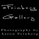 Aaron Feinberg Gallery